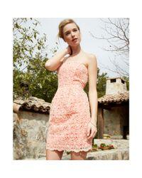 Jessica Simpson Orange Strapless Floral Lace