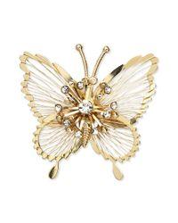 Jones New York Metallic Goldtone Crystal Butterfly Pin Box