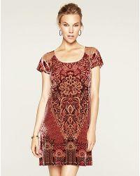8b79c14b2c Lyst - Lucky Brand Velvet T-shirt Dress in Brown