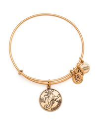 ALEX AND ANI | Metallic Scorpio Bangle | Lyst