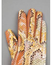 Imoni Brown Python Skin Glove