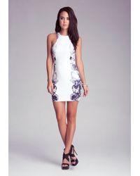 Bebe White Floral Affair Dress
