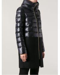 Herno Black Herno Padded Coat