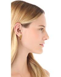 Rachel Zoe - Metallic Micro Knot Post Stud Earrings - Lyst