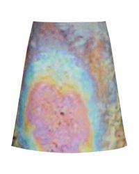 Carven Blue Printed Cottonblend Felt Skirt