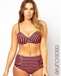 ASOS Purple Curve High Waisted Bikini Pant with Stripe