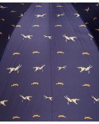 London Undercover - Blue Navy Agi and Sam Dog Print Umbrella - Lyst