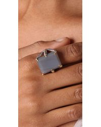 Elizabeth and James - Metallic Bird Claw Ring with Grey Agate Stone - Lyst