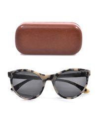 Illesteva Multicolor Claire Cateye Sunglasses
