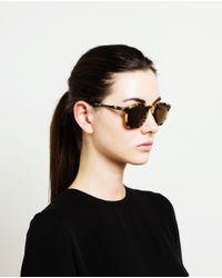 Illesteva Brown Hudson Tortoiseshell Acetate Sunglasses