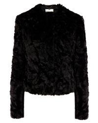 Coast Black Alfine Fur Jacket