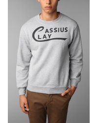 Urban Outfitters - Gray Cassius Clay Pullover Sweatshirt for Men - Lyst