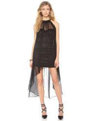 Blaque Label Black Sleeveless Halter Dress