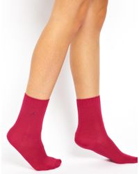 Calvin Klein Multicolor 3 Pack Crystal Logo Socks Gift Box