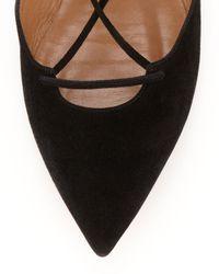 Aquazzura - Black Belgravia Lattice Suede Flat - Lyst
