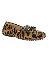 Car Shoe Brown Leopard Print Loafer
