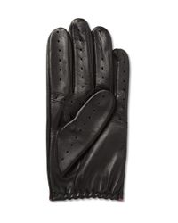 Dents Black Perforated Leather Driving Gloves for men