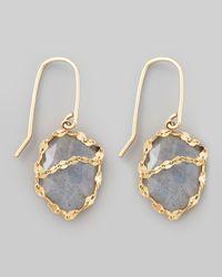 Lana Jewelry Metallic Labradorite Possess Earrings