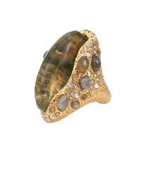 Alexis Bittar Metallic Moss Agate Doublet Ring