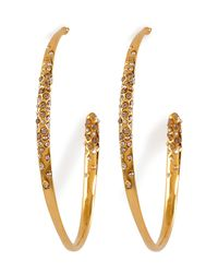 Alexis Bittar - Metallic Crystal Encrusted Gold Large Hoop Earrings - Lyst