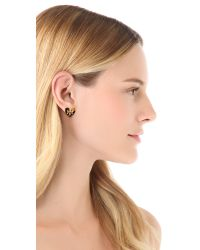 Tory Burch - Brown Tilsim Logo Heart Stud Earrings - Lyst