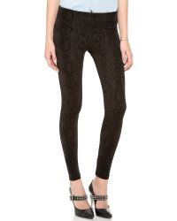 David Lerner Black Velvet Snake Flocked Leggings