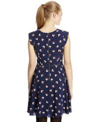 Oasis - Blue Flower Skater Occassion Dress - Lyst