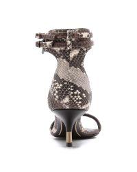 Giuseppe Zanotti Multicolor Python Kitten Heel Sandals