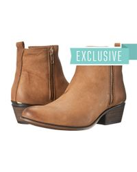 Steve Madden | Brown Exclusive - November | Lyst