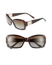 Tory Burch Brown 56mm Polarized Sunglasses