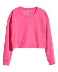 H&M Pink Cropped Sweatshirt
