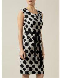 Precis Petite Black Ottoman Spot Shift Dress