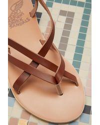 Ancient Greek Sandals Brown Semele Sandals