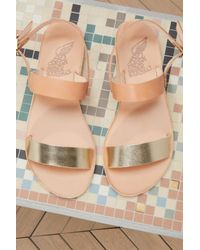 Ancient Greek Sandals Multicolor Clio En Cuir Sandals