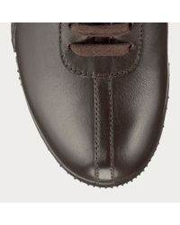 Bally Brown Francisca Women ́s Fondente Leather Trainer