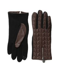 Lauren by Ralph Lauren | Brown Rll Logo Zipper Touch Glove | Lyst