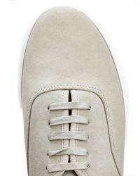 Eytys Gray Mother Suede Sneakers