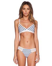 Blue Life Blue Portofino Triangle Bikini Top