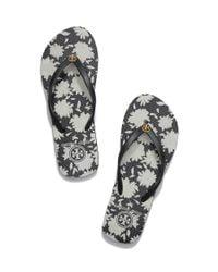 Tory Burch - Black Toe Post Sandal - Lyst