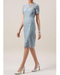 Hobbs Blue Lace Dress