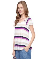 Splendid Blue Horizon Stripe Raglan Tee