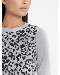 Oasis Gray Animal Jacquard Sweater