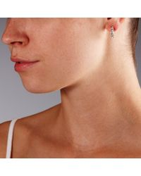 John Lewis - Metallic Medium Dima Hoop Earrings - Lyst