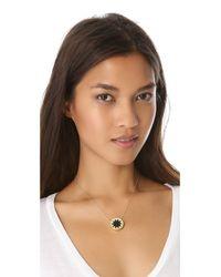 House of Harlow 1960 Black Mini Sunburst Necklace
