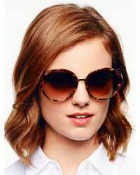 kate spade new york - Brown Bernadette Sunglasses - Lyst