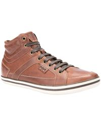 Geox Brown Box Cupsole Hi-top Leather Trainers for men