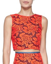 Nicole Miller | Orange Sleeveless Floral Lace Crop Top | Lyst