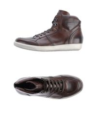 Barracuda | Brown High-Tops & Trainers for Men | Lyst