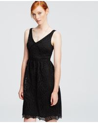 Ann Taylor | Black Petite Lace Flare Dress | Lyst