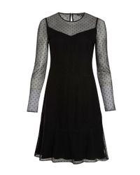 Rag & Bone Black Sheer Polka Dot Charlotte Dress